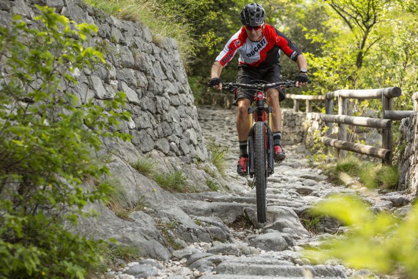 Ducati Mig-RR, troy bayliss