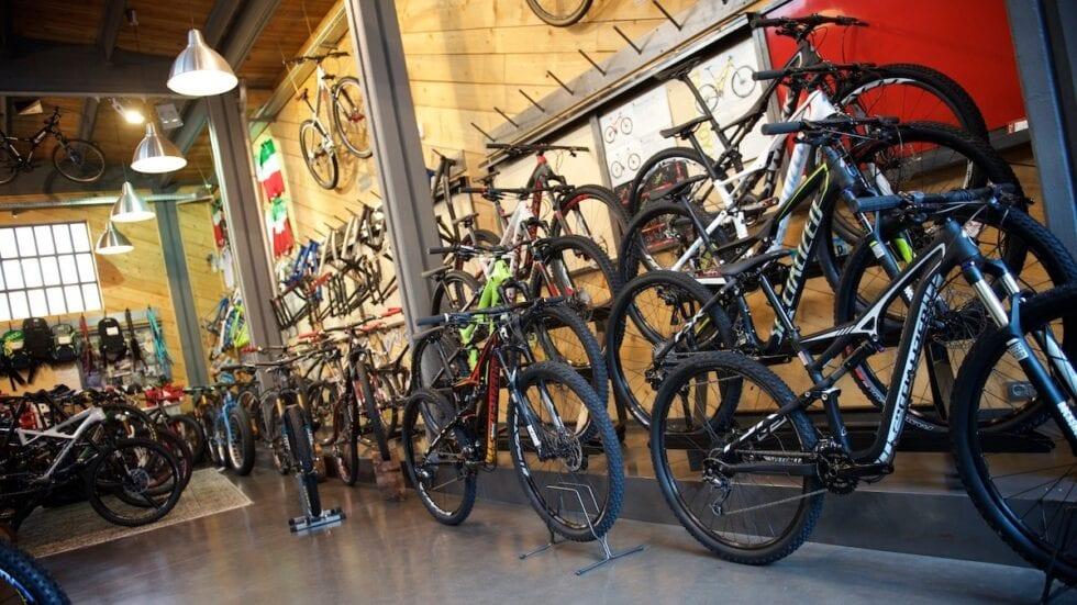 Bonus bici: vi anticipiamo le istruzioni per ottenerlo (e i punti deboli…)