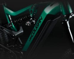 gamma e-bike Lee Cougan