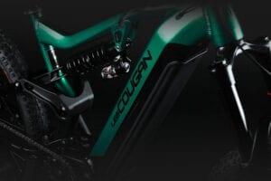 gamma e-bike Lee Cougan